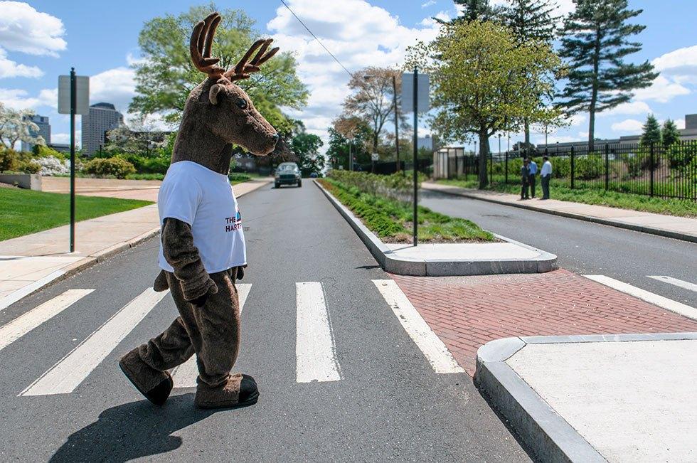 Hartford stag mascot