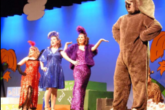 Rental costumes for theatre production of Seussical