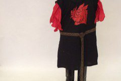 blackknight spamalot costume