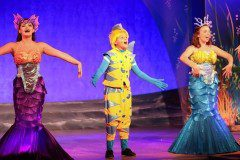 Little Mermaid Musical Flounder and Mersisters Theatre Costume