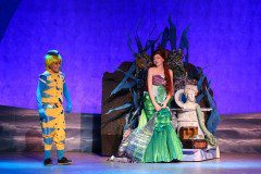 The Little Mermaid Musical Ariel and Flounder Costumes