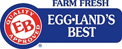 Egg Land Best Mascot Costume